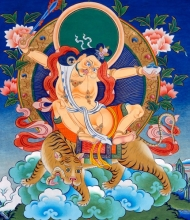 Vision 4: As a Yogi on a Tiger