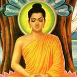 Buddha-Shakyamuni-