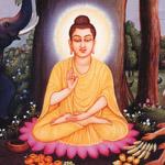 Buddha_shakyamuni01